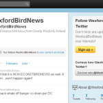 New Twitter rare bird alerts launched