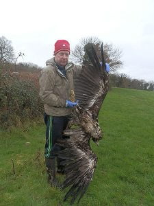 Dr Allan Mee with the white-tailed eagle shot dead in Tipperary