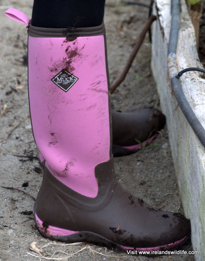 Gear Review: Muck Boot Arctic Adventure Ladies&39 Boots - Ireland&39s