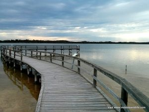 Wooden boardwalk at the Lake Clifton thrombolites