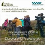 Experience the wild side of the Wild Atlantic Way on a Discover Wildlife Weekend