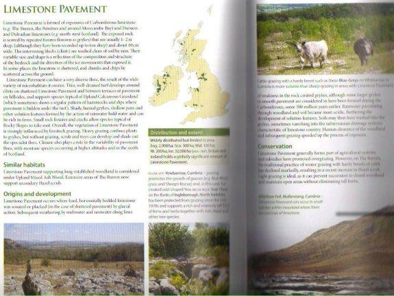 Britains Habitats Limestone Pavement