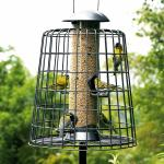 Feeder guardian: keep larger birds and squirrels at bay