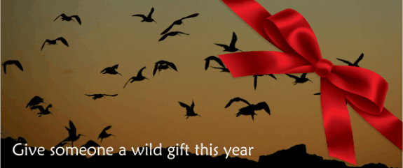 Wildlife gifts for Christmas