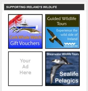 Supporting Ireland's Wildlife through advertising