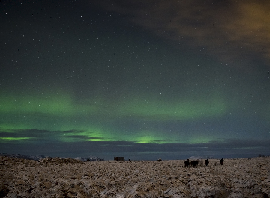 manchester fashion blogger, manchester bloggers, travel blogger, Reykjavik, Iceland Reykjavik, visit Reykjavik, visit Reykjavik, fashion blogger, northern light, aurora