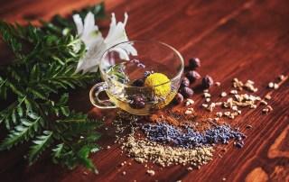 Plantes et épices aryuvédiques