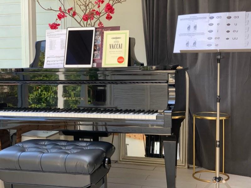 Corona-virus: online zangles & pianoles met Skype en Zoom