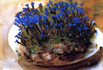 John Singer Sargent (American, Impressionism, 1856–1925): Blue Gentians, 1905. Watercolor on paper, 24.1 x 35.6 cm. Private Collection.