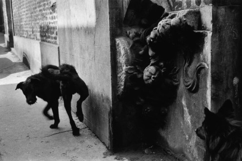 "Sergio Larrain/Magnum Photos: ""La Ruche,"" artists' village. FRANCE. Paris. Montmartre. 1959."