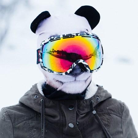 Sturmmaske Panda - Sturmhauben zu Weihnachten verschenken