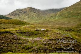 Highlands / Glen Shiel / Five Sisters