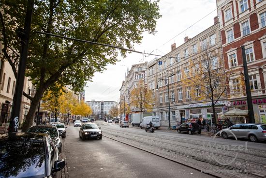 Magdeburg im Herbst - Breiter Weg