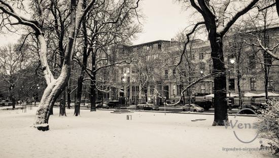 Winterspaziergang, Magdeburg, Fürstenwallpark –  Foto Wenzel-Oschington.de