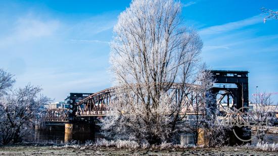 Winterliches Magdeburg - Januar 2019 –  Foto Wenzel-Oschington.de
