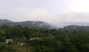 Large bush fire in Mavis Bank brought under control