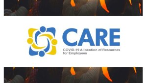 Finance Ministry working to fix glitches on Covid We Care grants website
