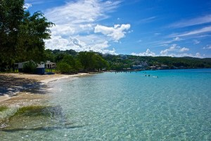 Sargassum Seaweed Contributing To Beach Erosion Across Jamaica