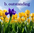b-outstanding-sm