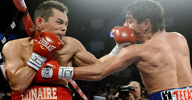 Image result for nonito donaire