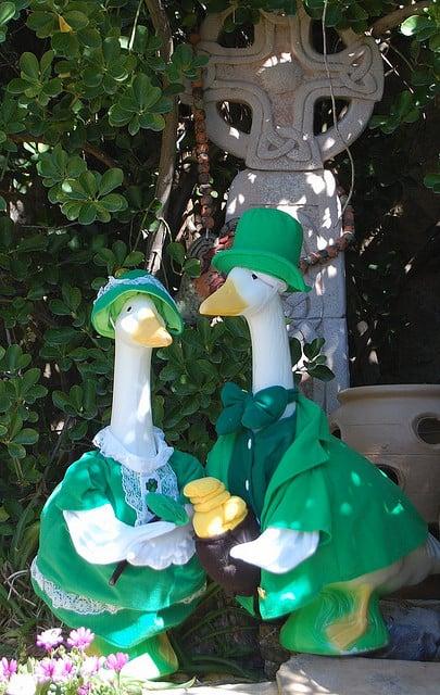 Leprechaun Geese