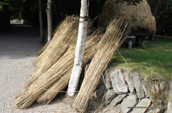 Cane bundles for thatching a cottage