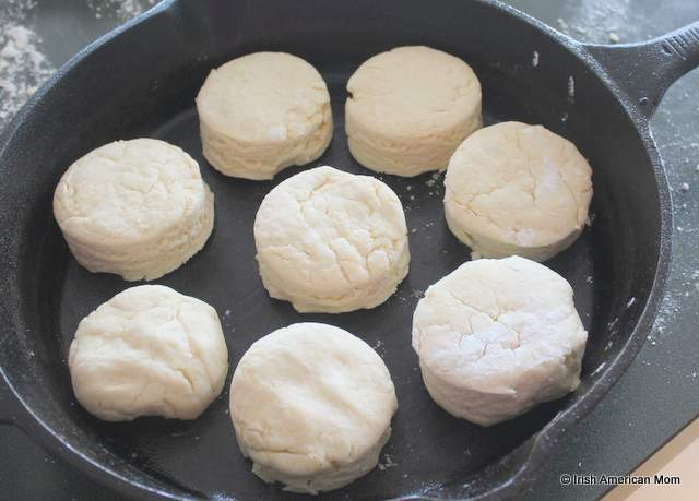 Buttermilk biscuit rounds in a cast iron skillet