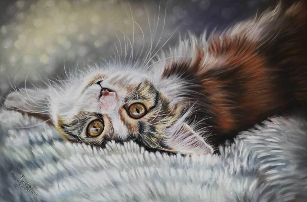 Latest Cat Portrait Print