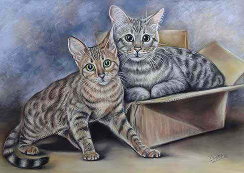 Cat Portrait of two cats by Irisha's Pet Portraits
