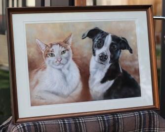 cat and dog custom portrait