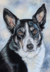 dog custom portrait