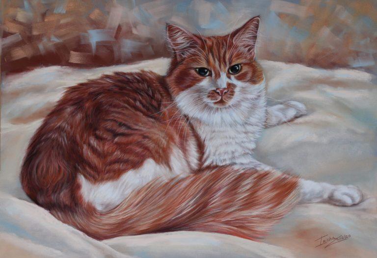 ginger cat portrait uk painting in pastel