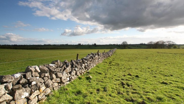 European visions of Ireland over the centuries