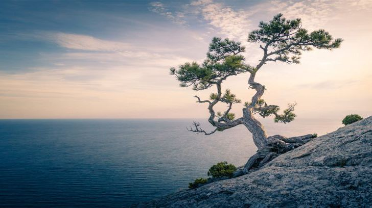 The Christian roots of mindfulness
