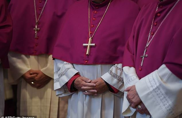 Allowing the ordination of married priests is not a silver bullet