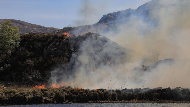 Watching in horror as Killarney National Park burned