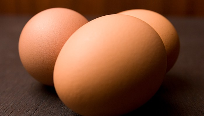 Eggs – An Introduction