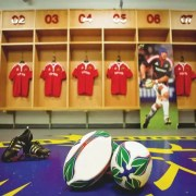 Thomond Park - Irish Rugby Tours, Rugby Tours To Limerick