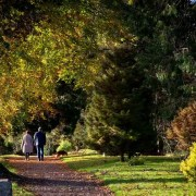 Birr Castle Grounds Irish Rugby Tours, Rugby Tours To Dublin