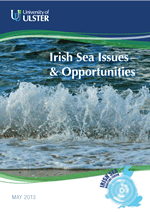 ISMf Issues and Opps Report Cover Small