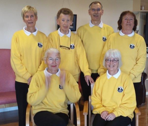 Limerick Volunteers