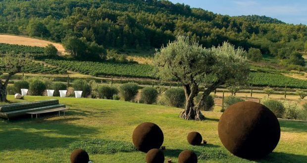Image result for domaine des andéols olive trees