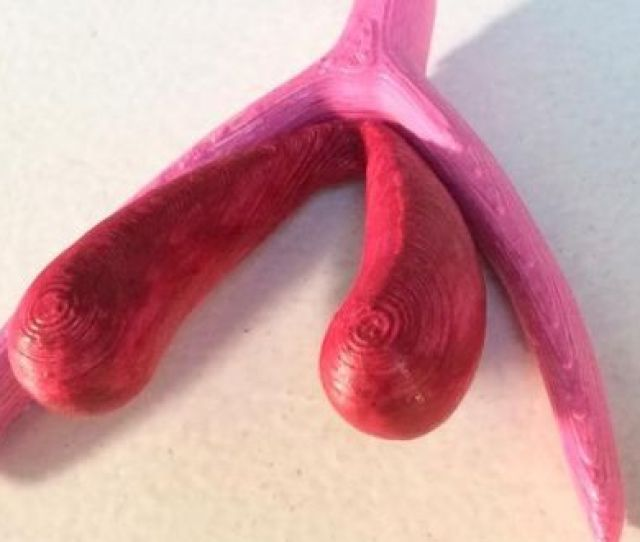 The D Printed Clitoris Will Be Used In Sex Education Lessons From Primary Level In France