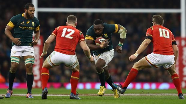 95-time capped prop Tendai Mtawarira. Photograph: Michael Steele/Getty