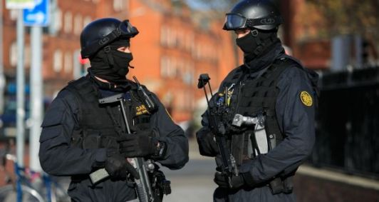 Image result for Armed support