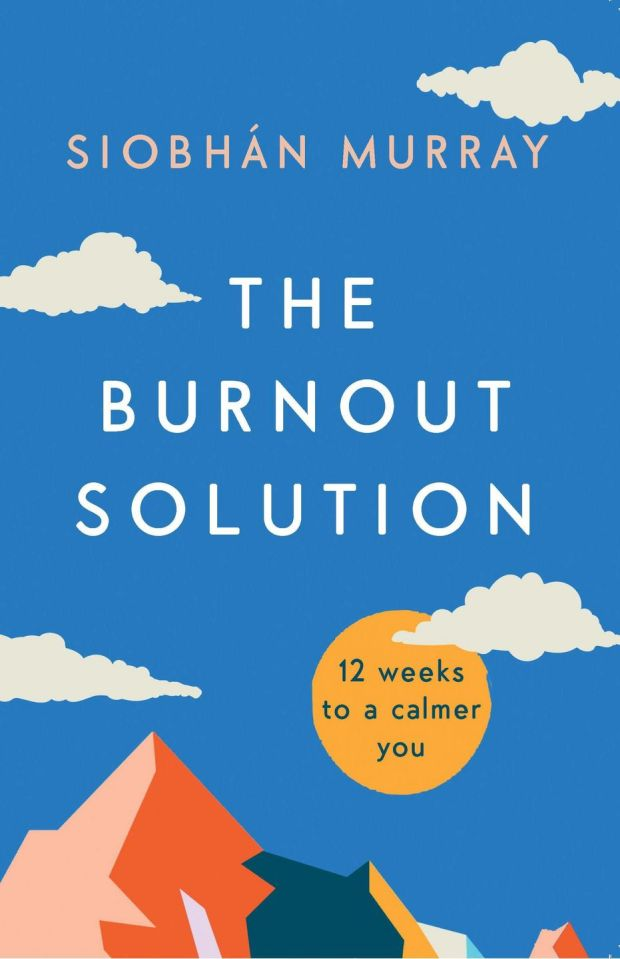 This book could be the solution to a calmer you in 12 weeks