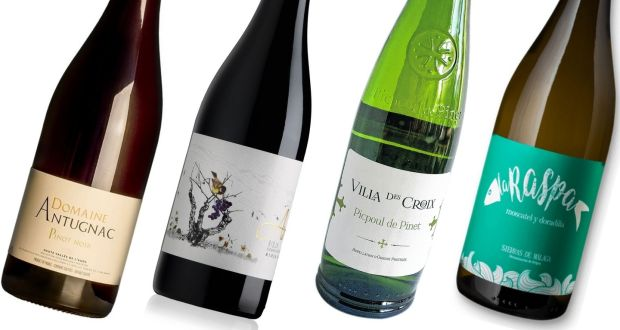Domaine Antugnac Pinot Noir, Aduna Rioja, Villa Des Croix Picpoul de Pinet and La Raspa Blanca Seco