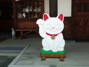 Manekineko reception