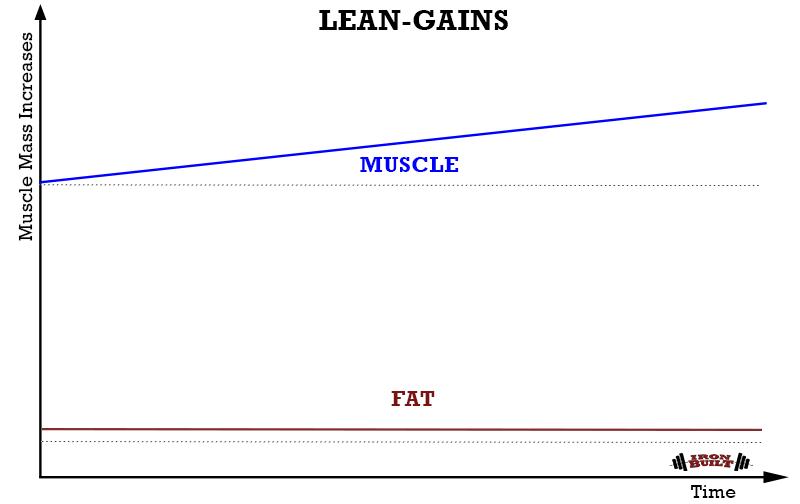 LEAN-GAINS-METHOD