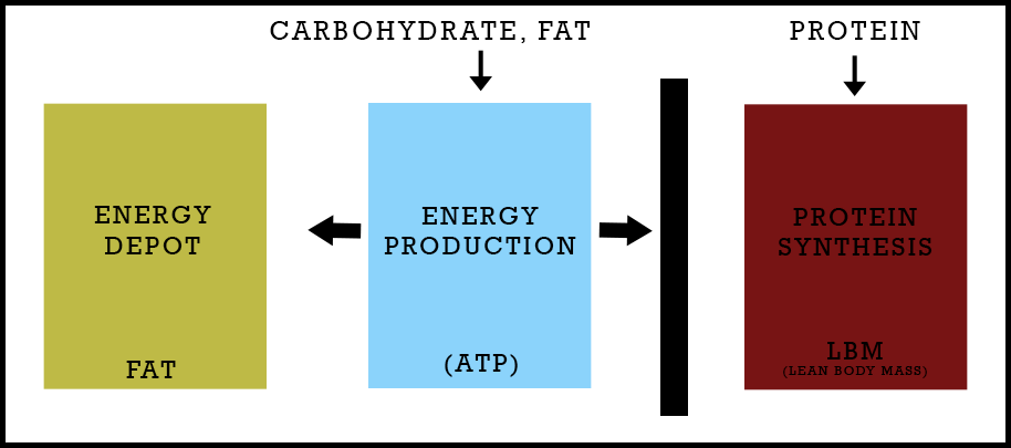 nutrient-partitioning